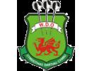 Welsh Darts Organisation